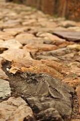FB_IMG_1492367303625 (DreamofGirl) Tags: chão pedra rua barroco minasgerais