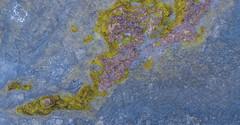 Serpiente marina ( www.mariorubio.com ) Tags: phanton 4 tenerife