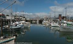 Fisherman's Wharf 4-2017 (daver6sf@yahoo.com) Tags: portofsanfrancisco boats pier49 fishingboats fishermanswharf sanfranciscobay lobster nicklighthouse