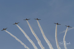 SnF20150425-1562.jpg (flyer_2001) Tags: skytypers prattwhitney usa lakelandairport r1340an1 formations geico florida displayteam northamerican snj2 sunnfun pw lakeland