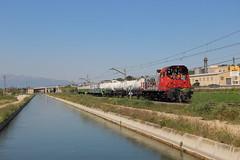 Matahierbas (Trenesmania) Tags: trenes trains railway ferrocarril mercancías adif 310 310043 tractor maniobras sintra herbicida infraestructuras vias ebro canal agua tortosa laldea campredó