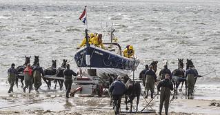 Paardenreddingsboot - 032_Web
