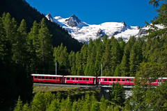 The red train of the Rhätische Bahn just after leaving Pontresina (echumachenco) Tags: train red rhätischebahn bridge railway forest ice snow glacier rock peak summit mountain alps outdoor valroseg berninagruppe pontresina valbernina berninaexpress tree august summer morning view panorama landscape serene graubünden grisons oberengadin engadin switzerland schweiz suisse svizzera svizra suiza nikond3100