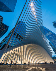 Oculus (20170411-DSC09908) (Michael.Lee.Pics.NYC) Tags: newyork wtc worldtradecenter oculus transportationhub calatrava architecture cityscape path night twilight bluehour sony a7rm2 voigtlanderheliar10mmf56