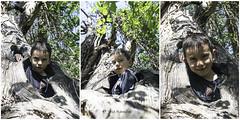 Nicolas y el Castaño (mercenario.one) Tags: arbol excursion jpg nico nicolas palacios retrato tronco