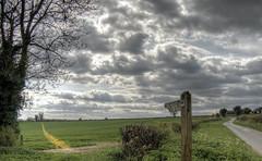 Footpath near Itchen Abbas, Hampshire (neilalderney123) Tags: ©2017neilhoward olympus landscape winchester ittenabbas rural fielf crop path footpath sign could field