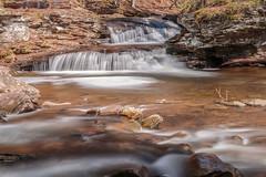 """Waters Meet (""""Bert"""" Brady) Tags: watersmeet nature water rickettsglenstatepark getoutdoorspa pastatepark kitchencreek creek adventures waterfall hiking pennsylvania outdoors park visitpa spring2017 padcnr"""