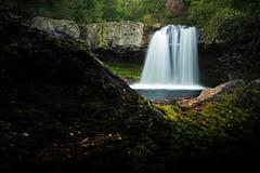 Cradle Mountain (eeriksandstrom) Tags: waterfall australia australian tasmania cradle mountain