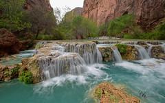 20170411-Havasu-945-Edit (BX's Photos) Tags: havasupai havasu supai falls mooney grand canyon water waterfalls havasucreek havasucanyon arizona turquoise grandcanyon coloradoriver