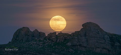 Pink Spectacle (http://www.richardfoxphotography.com) Tags: dartmoor haytor pinkmoon fullmoon moonrise lowmansrock devon astrophotography outloods moon lunar