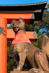 Fushimi Inari Shrine (julesnene) Tags: canon7dmark2 canon7dmarkii canonef35mmf14lusmlens fushimiinaritaisha inarishrine japan juliasumangil kyoto destination fox julesnene orange religion shrine torii touristattraction travel kyōtoshi kyōtofu jp