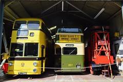 Trolleybuses (PD3.) Tags: bournemouth 286 ylj286 ylj sunbeam weymann roe derby 237 sch237 sch east anglia transport museum bus buses trolley trolleybus tram trams carlton colville lowestoft england uk eatm