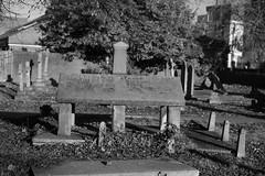 _IAW9340 (IanAWood) Tags: lbofbrent london londoncemeteries nikkorafs58mmf14g nikondf walkingwithmynikon willesden willesdennewcemetery
