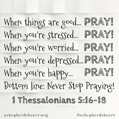 May prayer always be our first response in every season and situation of life!   Never an afterthought!   #faith #hope #pray #praywithoutceasing #bible #scripture #Godsword #heart #mind #soul #strength #christian #Christianity #christfollower #ashepherdsh (ashepherdsheart) Tags: faith ashepherdsheart scripture praywithoutceasing madewithpixlr soul christian heart godsword christfollower bible mind pray strength christianity hope