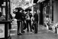 _DSC7075 (carlosvmartin) Tags: bnw nikon zaragoza streetphotographie street callejeando city spain mariachis