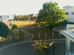 2017-04-28T07:30:04.822867+10:00 (growtreesgrow) Tags: trees timelapse raspberrypi
