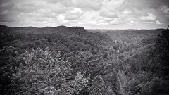 View from above (Anna C Cox) Tags: blackandwhite landscape kentucky mountians mobilephotography uploaded:by=flickrmobile flickriosapp:filter=nofilter