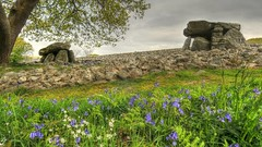Dyffryn Ancient Burial Chamber .. Snowdonia (TopSausageLobber) Tags: city autumn trees winter sunset sea summer portrait england sky usa house mountain lake seascape colour ford love beach dogs water birds sex ferry wales architecture liverpool canon buildings woodland river nude landscape boats photography dawn evening shark seaside spring sand nikon rocks goldfinch ships bangor cotswolds gloucestershire lancashire valley yorkies yorkshireterrier tern oxfordshire raf birdsofprey boatyard cottages redkite sandwichtern bibury anglesey breeds holyhead arctictern albertdocks bangorpier baehawk fford blacktailedstilt dyffrynburialchamber
