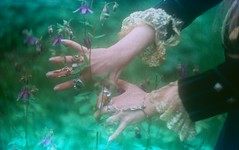 these hands (Your Heart's Desire) Tags: summer film hands sherwoodforest witches faeries mokshamedicine