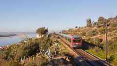 Regional para Castelo Branco (Nohab0100) Tags: rio train river railway railcar emu cp alstom tejo comboio automotora 2240 sorefame linhadabeirabaixa
