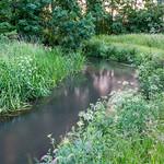 River-Lodden