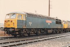 56032 Sir De Morgannwg County of South Glamorgan  24th Jan 1987 Westbury (Ian Sharman 1963) Tags: county train de grid diesel jan 1987 south engine loco class glamorgan depot sir 24th 56 westbury morgannwg 56032