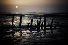 Wadden Sea (Wattenmeer) #10 (Volker Birke) Tags: sunset sea wadden sonnenuntergang tide low north sonne nordsee groyne carolinensiel ebbe schlick wattenmeer buhne