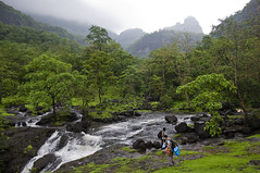 Where Bhima River starts its journey (somabrata) Tags: travel trekking trek village exploring monsoon maharashtra pune southindia sahyadri bhimashankar cobrahood riversource westernghat nagfani khandas bhimariver originofriver trekkinginpune sidighat hikinginindia