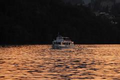 Schiff MS Stockhorn ( Baujahr 1974 - Länge 35.70 m - Passagiere 250 - Motorschiff Kursschiff Fahrgastschiff bateau ship nave )  während des Sonnenuntergang - Sunset am Thunersee ( See Lac Lake ) im Berner Oberland im Kanton Bern der Schweiz (chrchr_75) Tags: chriguhurnibluemailch christoph hurni chrchr chrchr75 chrigu chriguhurni schweiz suisse switzerland svizzera suissa swiss 2013 thunersee berner oberland berneroberland kantonbern see lac lake lago schiff kursschiff schiffahrt kursschiffahrt passagierschiffahrt passagierschiff skib ship alus bateau πλοίο 船 корабль schip fartyg barco albumschweizerkursschiffe 1309 september september2013 kanton bern alpensee sø järvi 湖 albumthunersee sonnenuntergang sunset coucher du soleil zonsondergang tramonto 夕日 albumkursschiffethunersee albumthunerseemsstockhorn ms stockhorn msstochorn fahrgastschiff motorschiff
