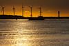 5 windmills and 1 lighthouse (beta karel) Tags: light sunset sun lighthouse reflection water gold harbor maasvlakte nieuwewaterweg hoekvanholland maashaven 2013 ©betakarel 5windmills