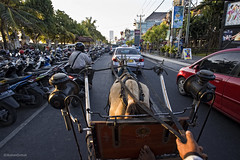 Horse Ride on the roadway | Kuta Avenue, Bali | AJP_2550 (azj68@yahoo.com | +6 0138895959) Tags: bali ride kutabali kuda kuta horseriding horsedrawncarriage kutabeach baliindonesia carriagerides keretakuda horsecarriagerides horsecarriagerideskuta
