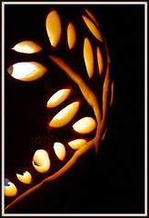 ~heavenly details of a pumpkin~ (^i^heavensdarkangel2) Tags: nightphotography autumn orange macro art fall night pumpkin colorado sony pumpkincarving veg durango halloweenpumpkin pumpkinart sonydslra200 againstblackbackground desbahallison ihda~desbahallison halloween2013 trialpumpkin allisonarts heavensnewtool