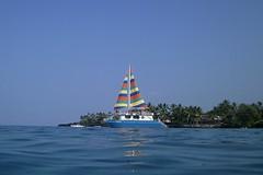 outbound (BarryFackler) Tags: ocean sea water palms island hawaii polynesia bay boat marine sailing pacific vessel palmtrees pacificocean catamaran sail bigisland nautical aquatic reef powerboat motorboat watercraft kona kailuakona pleasurecruise motorvessel konacoast hawaiicounty keauhoubay hawaiiisland keauhou 2013 snorkelcruise westhawaii northkona fairwindii fairwindcruises barryfackler barronfackler