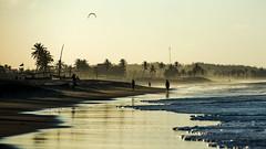 CUMBUCO BEACH (CUMBUGO) Tags: ocean blue sunset brazil sky people kite reflection tree beach water brasil america sand nikon sundown south kitesurfing palm nikkor f28 d800 70200mm cumbuco d800e
