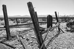 Rhyolite Grave (TheGriefmeister) Tags: wood arizona bw grave canon blackwhite desert decay 7d nik rhyolite silverefexpro2
