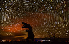 Eating The Stars (Bill Gracey) Tags: sky sculpture stars dinosaur nightsky cosmic startrails maryanderson northstar borregosprings anzaborregodesert lesanderson ricardobreceda nightskyphotography starstax