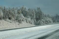 2009 Ice Storm Purchase Parkway (Porch Dog) Tags: nikon icestorm garywhittington january2009 marshallcokentucky