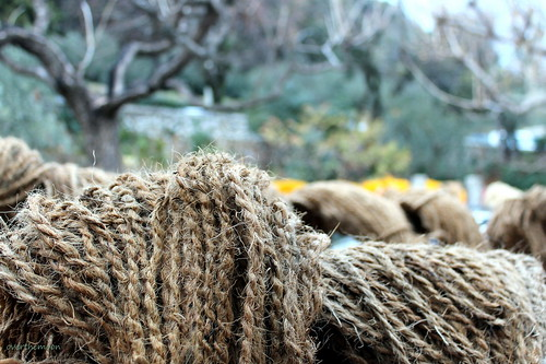 skeins of coir