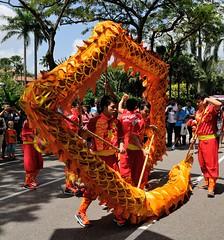 Img380960nx2_conv (veryamateurish) Tags: singapore chinesenewyear liondance shangrilahotel