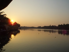 House boats in the sunset, Kerala backwaters, India (fam_nordstrom) Tags: india kerala indien bharat 2014