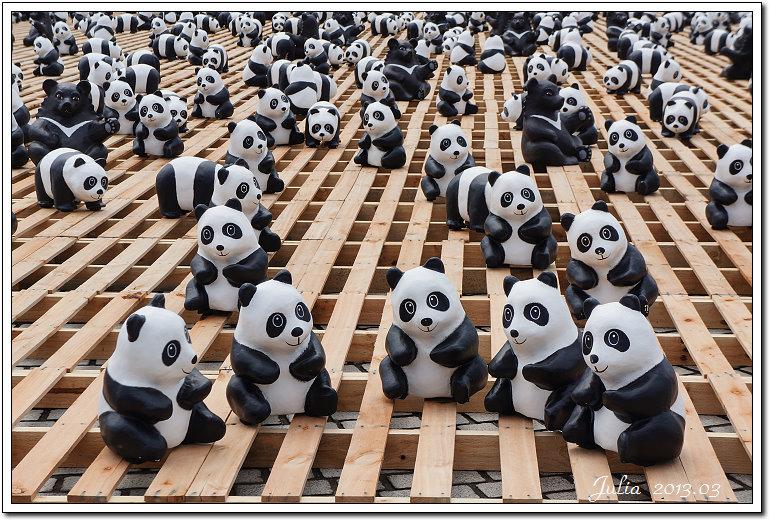 1600貓熊世界之旅 (16)