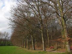Maastricht03-15