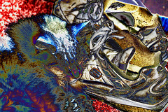 The Old Cat & the Shoe (fishmonger45) Tags: hss photoshop abstract cats colorful crazygeniuses