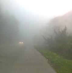 Rencontres dans le brouillard. (Gilbert-Noël Sfeir Mont-Liban) Tags: nebel kesserwan montliban liban brouillard fog phares voiture car route road montagne mountain rencontre encounter hiver winter mars march