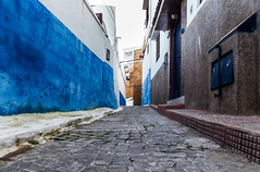 Le chemin - the way (A.B.S Graph) Tags: maroc morocco bleu oudaya oudaia rabat medina kasbah doors door gnaoui gnawi legnawi art style ciel sky ruelle rue street sale salé rbat cat lazy