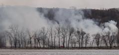 Controlled Burn (Jan Crites) Tags: iowa leclaire nature river mississippiriver lockanddam14 smoke burn controlledburn trees jancritesphotography february