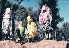 galah event 75 Mildura (deadbudgie) Tags: costume mascot galah budgie canary art sculpture mildura australia 1975 dot thompson