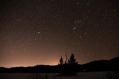 (Paul Mackay Photographie) Tags: winter camping forest trees brillant noir patience passion longexposure laurentides étoiles nuit d300 nikon sky stars night