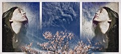 Imagine (Vanessa Vox) Tags: imagine triptychs collage inthedailyflowofnews spring sky selfies selfportrait vanessavox