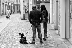 Des chaussures très confortables.. (Paolo Pizzimenti) Tags: chaussure chien chiot élève fauteuil statue arts parigi ravenne olympus zuiko penf omdem1mkii 25mm f18 film pellicule argentique doisneau